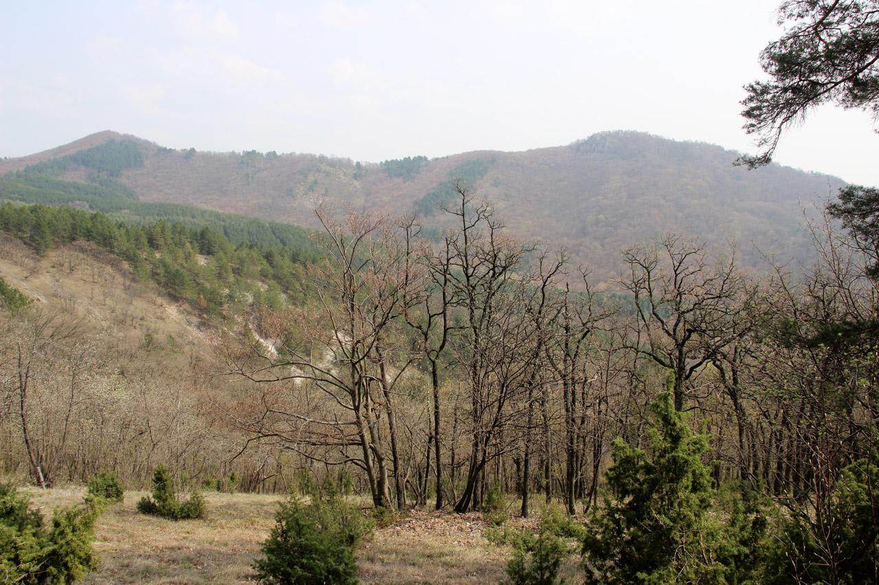 Kňaží Stôl a Bradlo, Strážovské vrchy