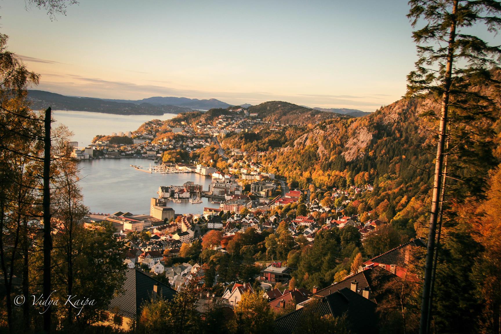 Mesto Bergen, Nórsko autor: Vidya Kaipa