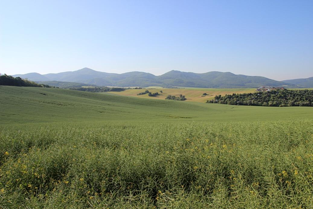 Strážovské vrchy a výhľad od Trenčína na dnešnú časť Strážovských vrchov