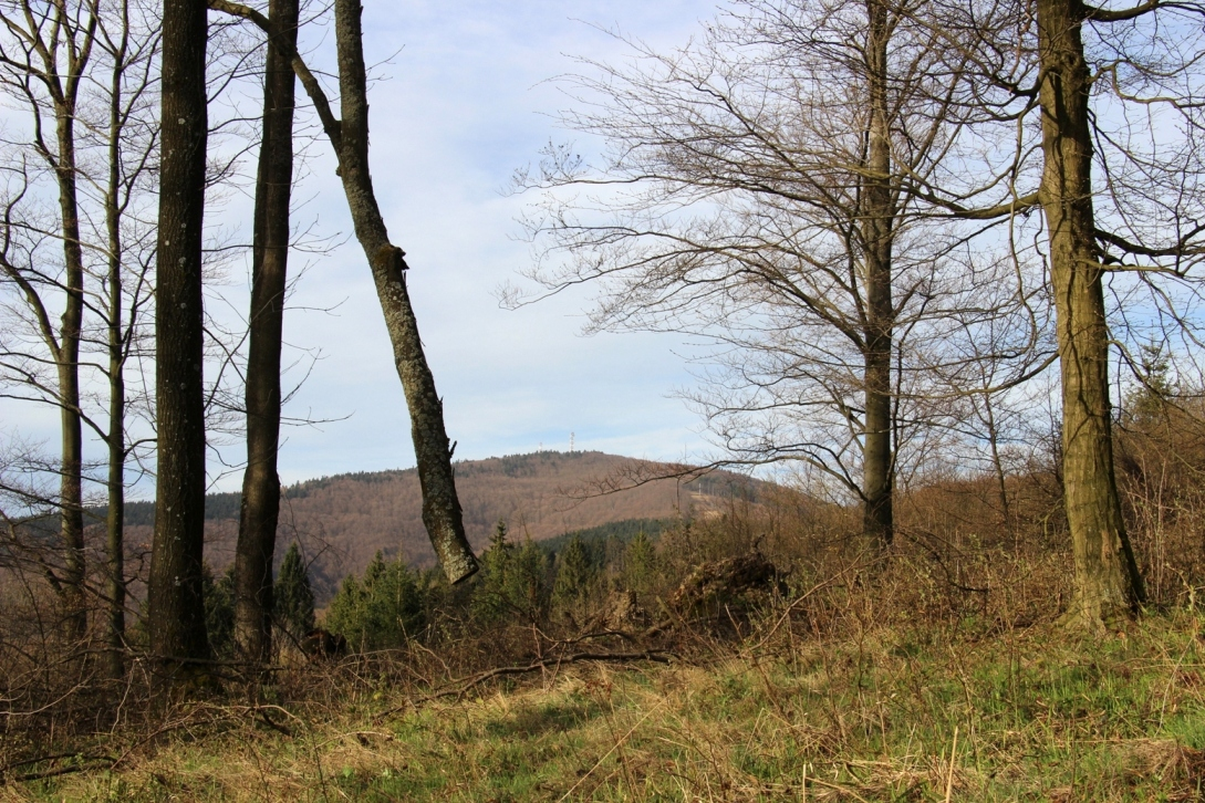 Neznačenou cestičkou medzi zelenou a červenou značkou - všimnite si strom visiaci voľne vo vzduchu :D - apríl