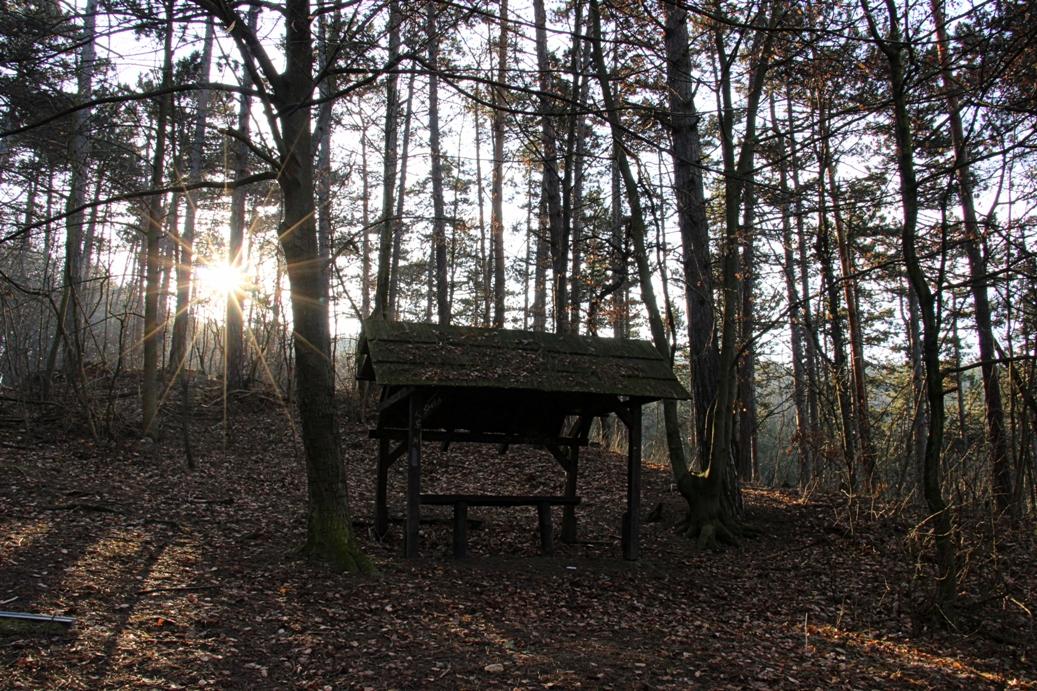 Strážovské vrchy a zimné ráno v lesoparku Brezina