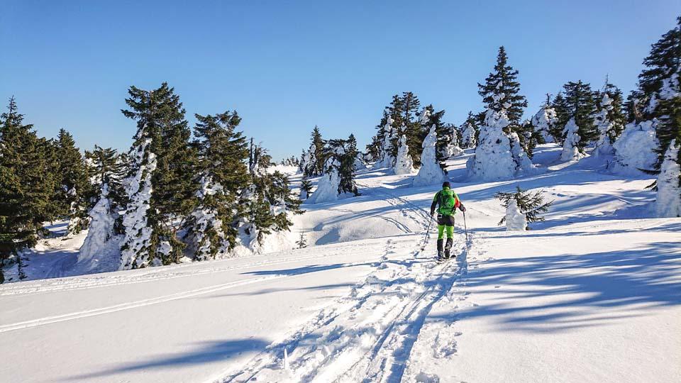 Skialpinistický ruksak Pinguin Ace 27 nám poslúžil na hrebeňovke Lúčanskej Malej Fatry