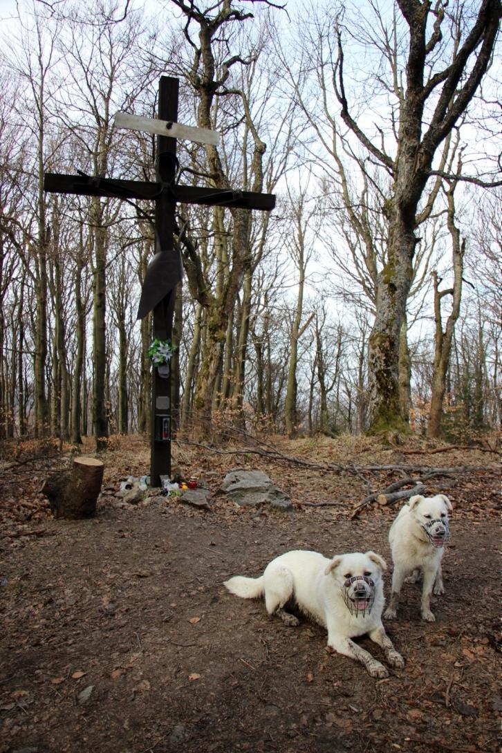Na vrchole s vernými parťákmi - apríl