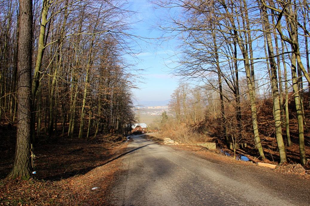 Strážovské vrchy a asfaltové stúpanie začiatkom Mitickej doliny