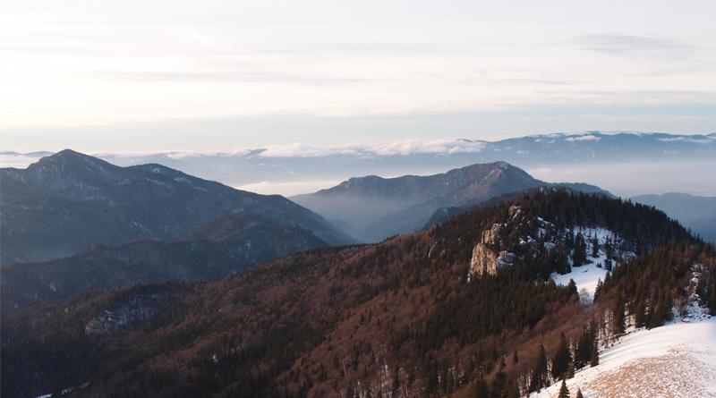 Expresky z hôr