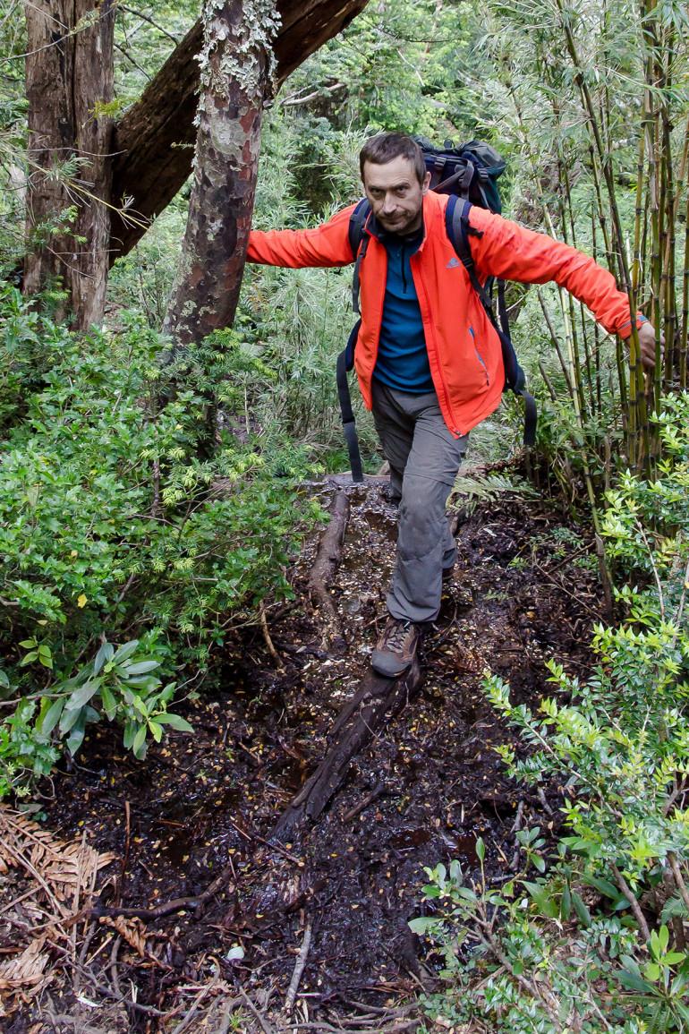 Prechod džunglou v Cochamo cestou do bivaku