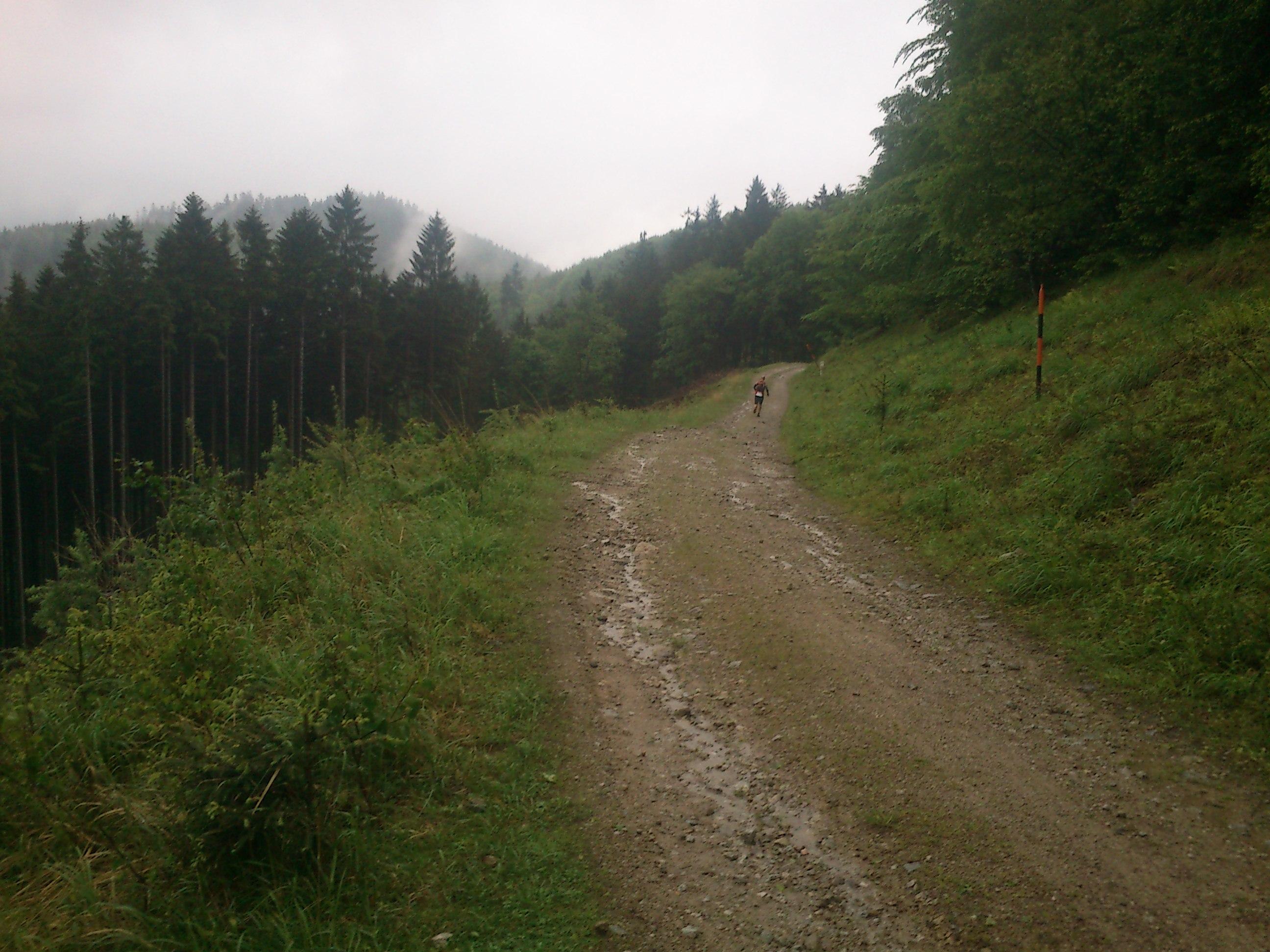 Malá Fatra cestou do strečna z Minčolu