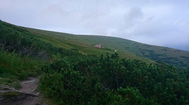 Hrebenovka nizke tatry