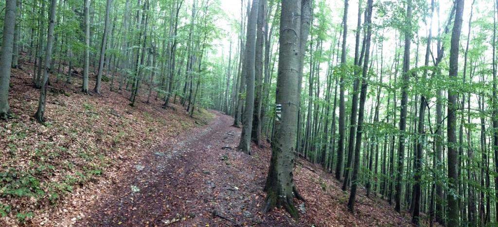 Zádiel pri horárni cez potok do prava a smer na planiny po modrej...stúpanie vyše kilometra ale po lesnej cestičke bez kameňov...