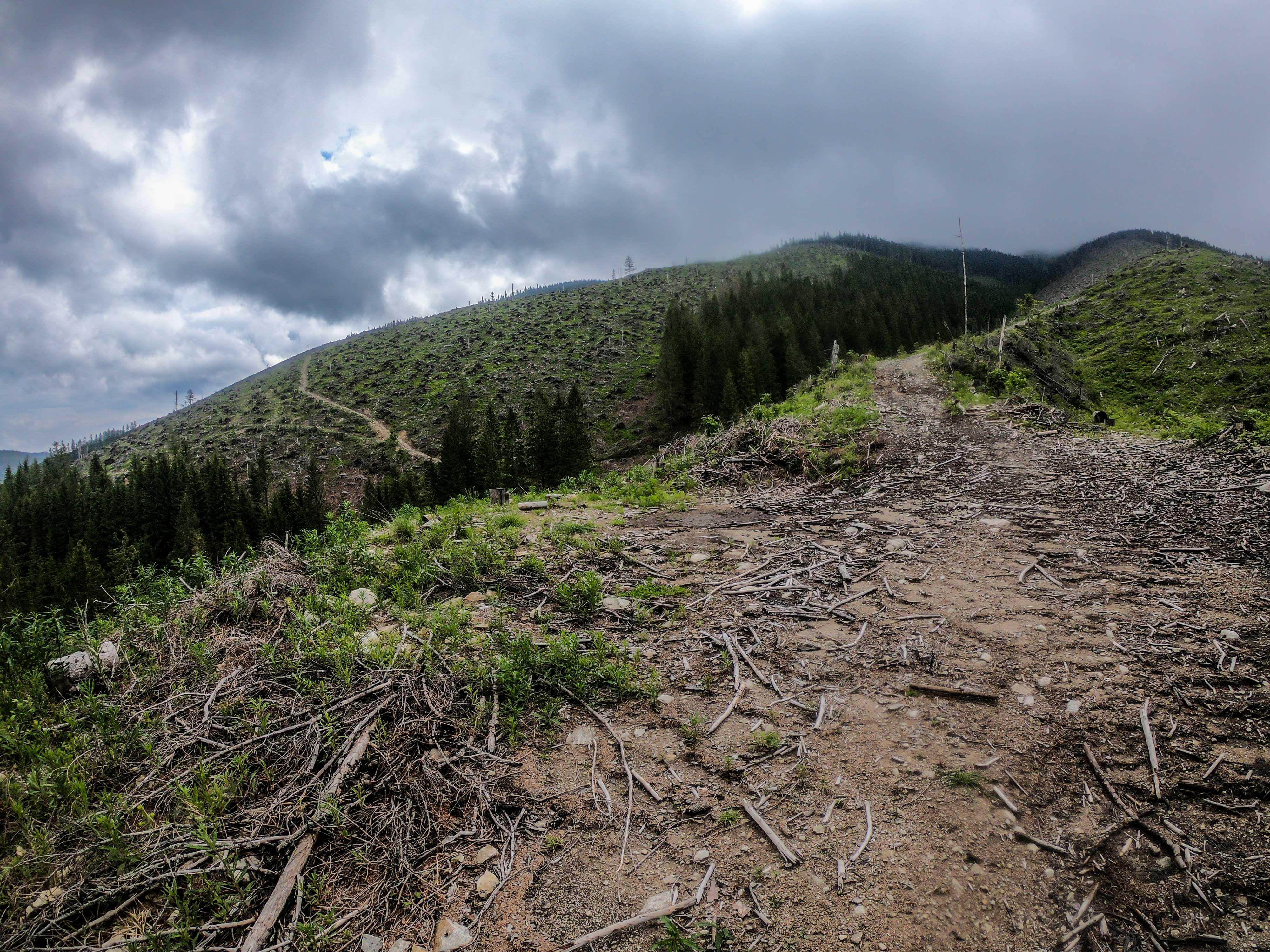 Hrebeňovka Nízkych Tatier Veľmi smutné pohľady na rozlúčku lemovali veľkú časť cesty klesania z hrebeňa