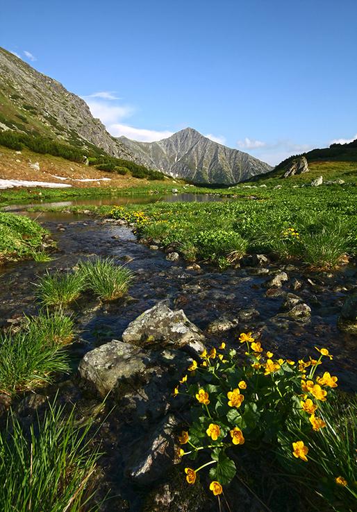 Potok Račková, Západné Tatry, Račkova dolina