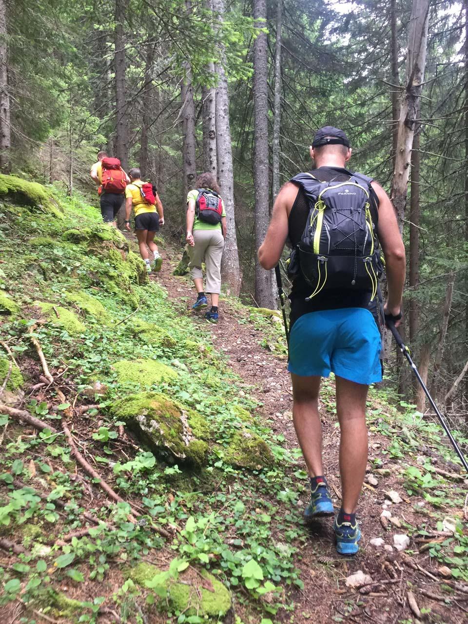 Lesný úsek na začiatku, kde domáci vychodili chodník Najvyšší vrch Kosova - Djeravica 2656 m.