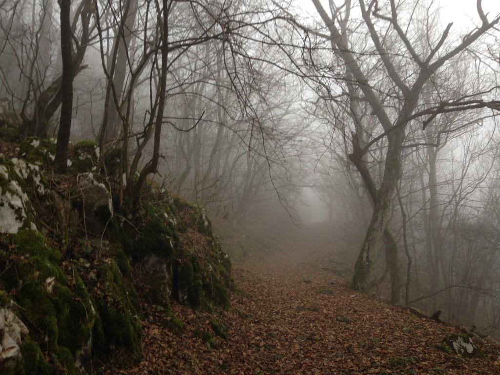 vybeh po zelenej z dedinky Haj smerom na planiny...