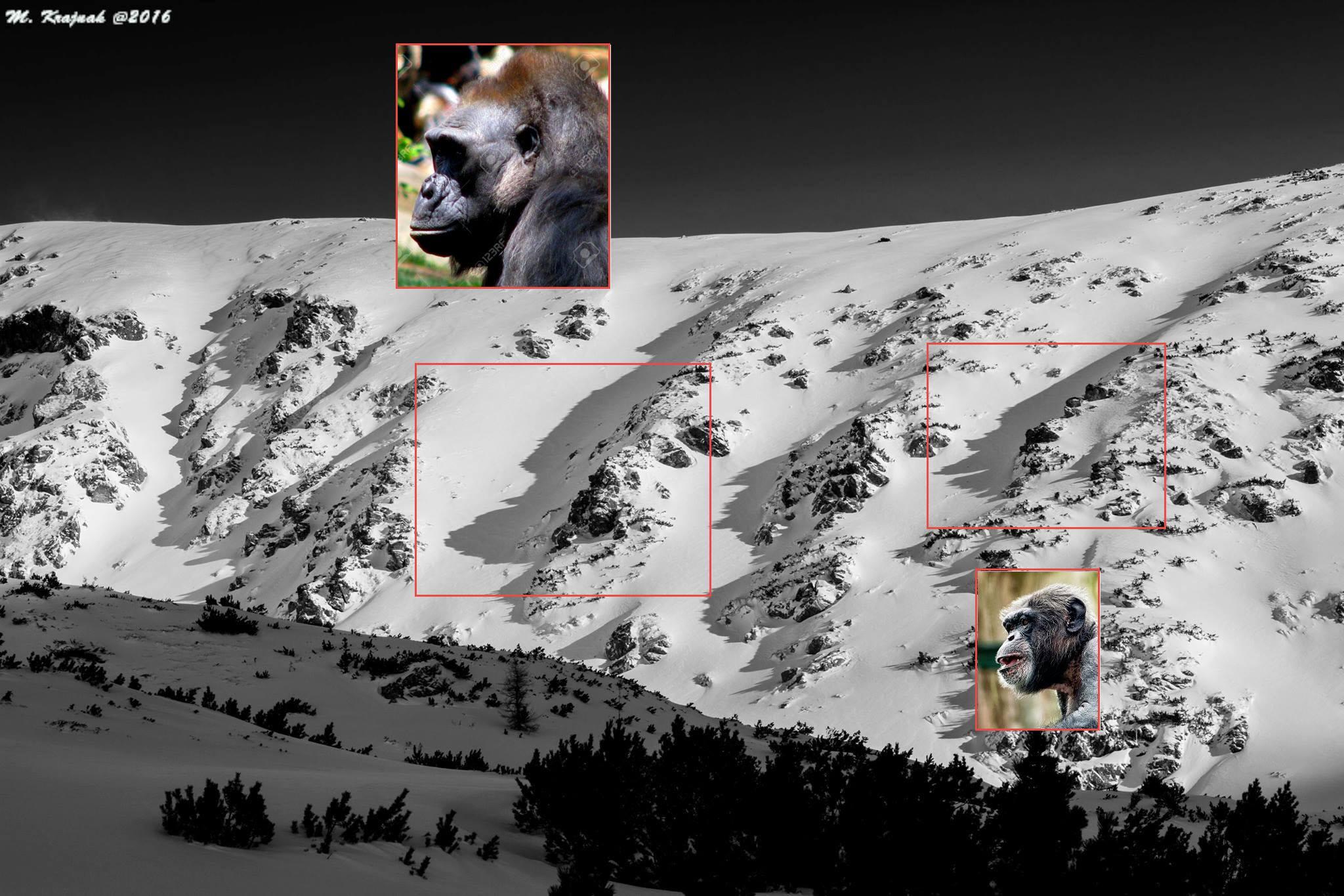 Expresky z hôr 40 - Opičie žľaby, autor: Martin Krajňák
