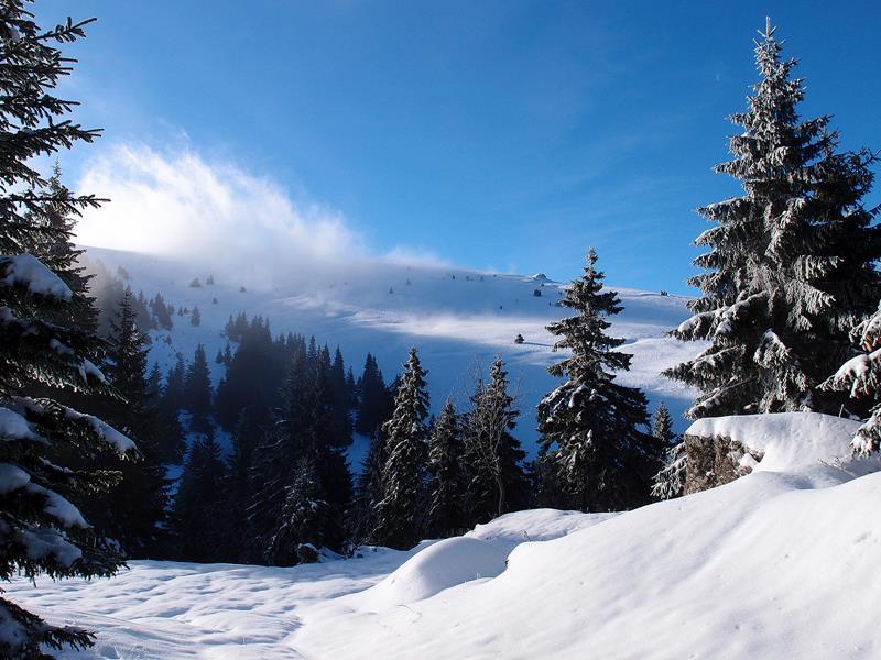 Zima na horách (© Thom)