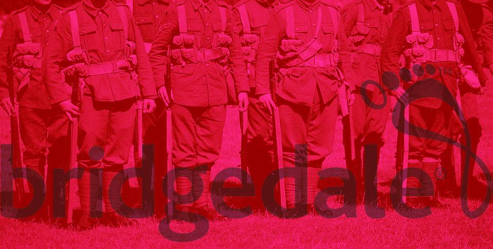 Bridgedale, zdroj: bridgedale.com