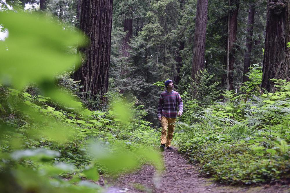 Chris Sharma walks through the woods in Eureka, CA, USA on 19 May, 2015.