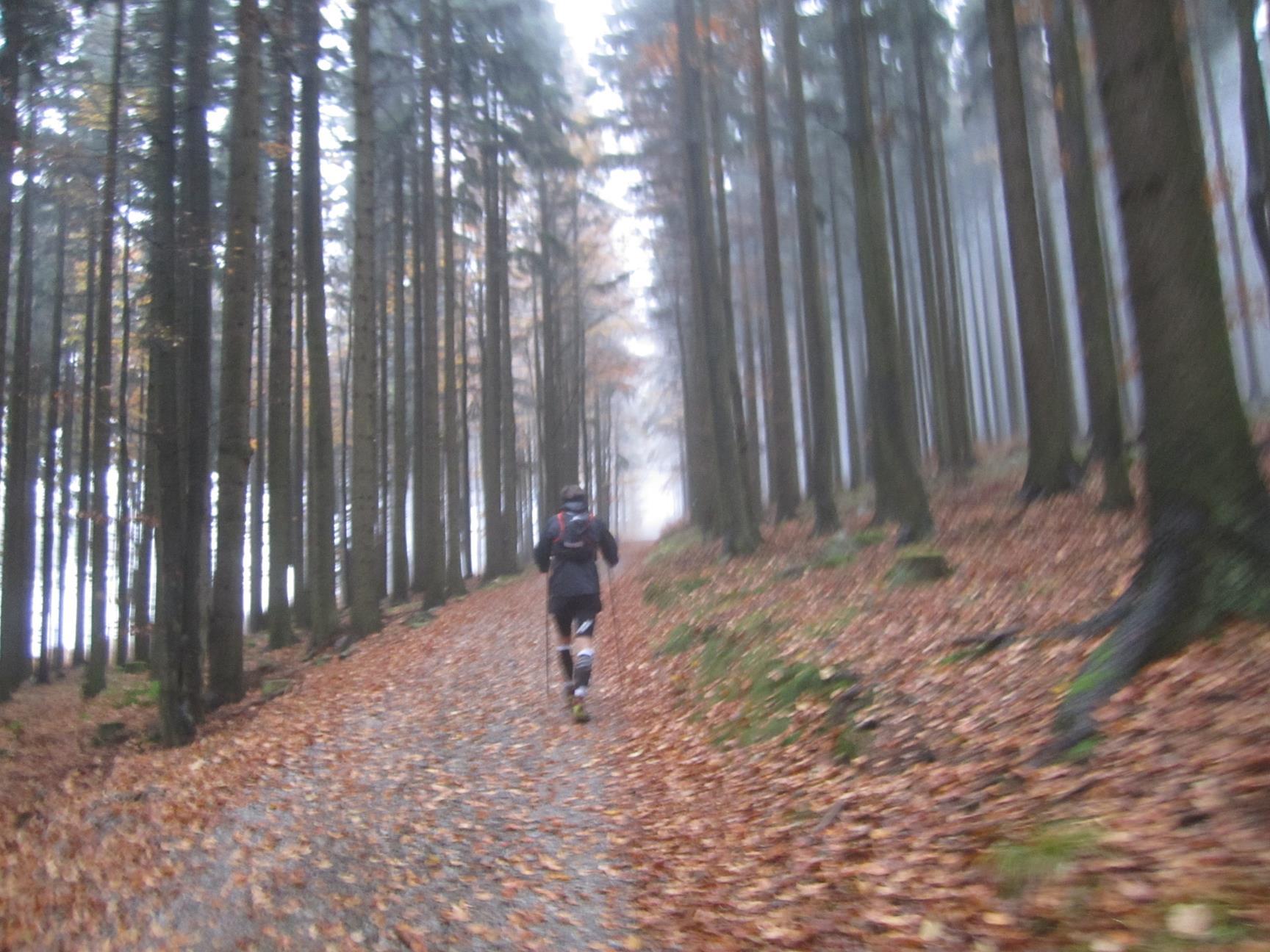 Expresky z hôr 41 - Moja prvá 100-míľovka, foto: Patrik Hrotek
