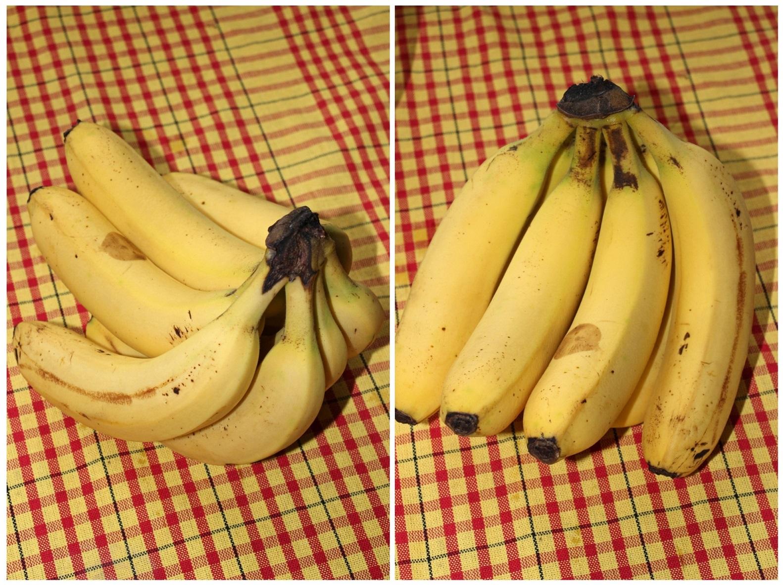 Banány si ideálne necháme dozrieť do bodkovaného štádia - tieto mi síce ani po 5 dňoch nezbodkovateli, ale sladučké boli už dosť
