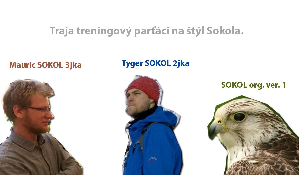traja partaci a ich sokoli treningovy styl/ 3 friends an theri falcon traineing style