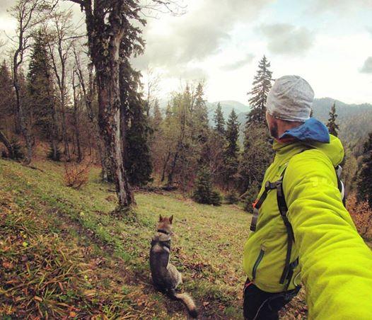 Expresky z hôr 11: Tyger a jeho verný parťák Bakmouse