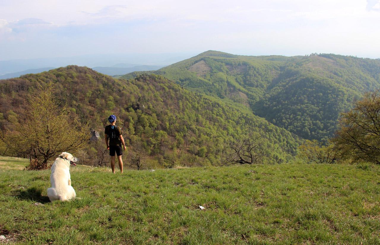 Ferrino Gariwerd short X-track na Rokoši v Strážovských vrchoch